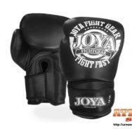 joya-fight-fast-bleck